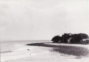 Rincon1964